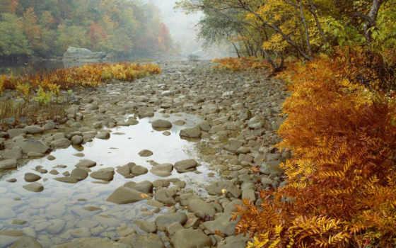 осень, река