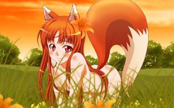 аниме, wolf, девушка