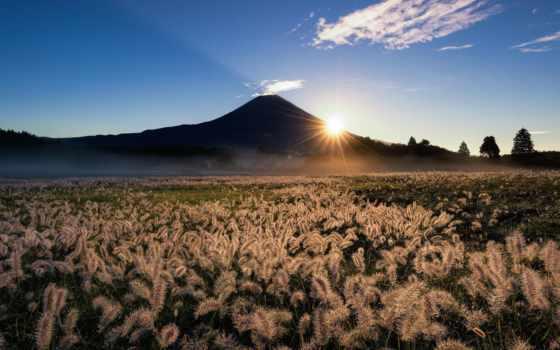 природа, japanese, фудзияма, вулкан, фудзи, лес, гора, rays, закат,