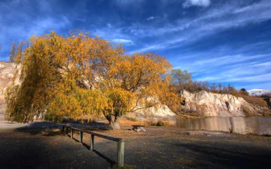 новая, zealand, фотообои, горы, небо, новой, листва, осенние, лес, осеннее,