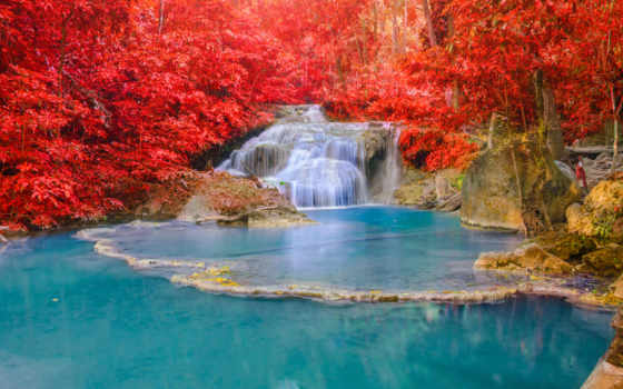 река, осень, листья