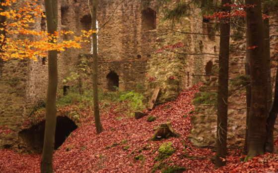 обои, стена, замок, лес, кирпичная, lik