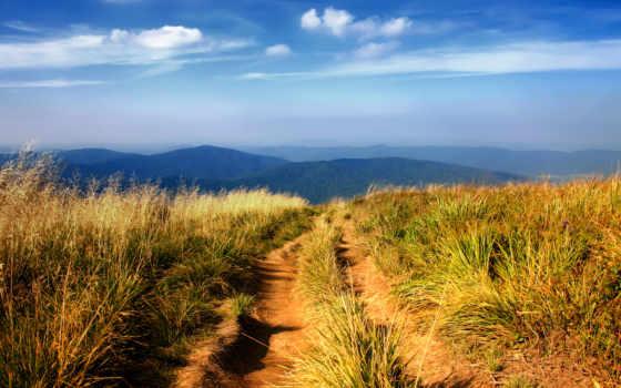 горная, trail, поле, сквозь, дорога, назад, water,