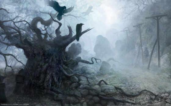 fantasy, witcher Фон № 11385 разрешение 1920x1200