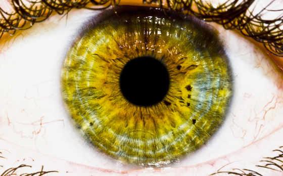 глаз, зрачок, eyes