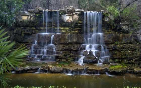 zilker, botanical, gardens, austin, фото, texas, garden, march, фотоальбом, картинка,