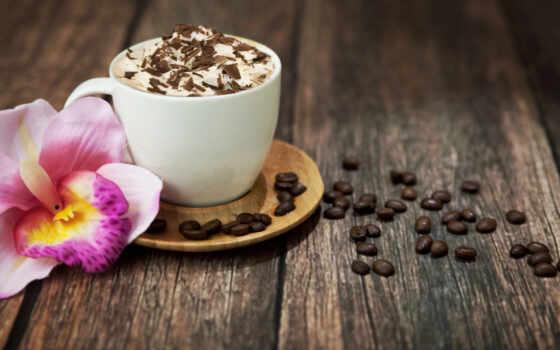 coffee, cup, напиток, seed, cappuccino