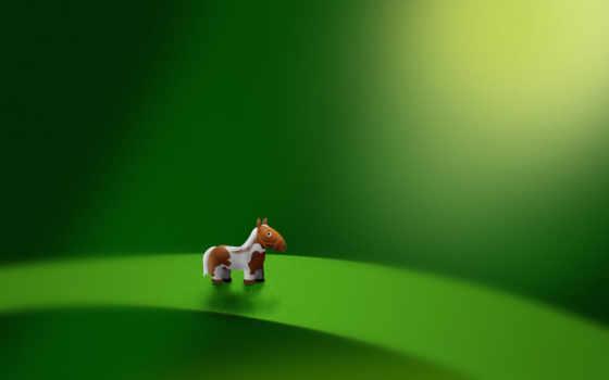 пони, лошадь