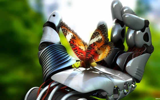 робот, бабочка