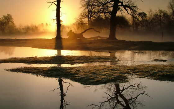 красивые, природы, природа Фон № 102766 разрешение 1920x1080