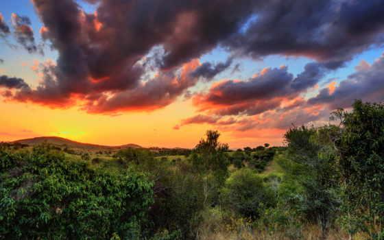 природа, alcatel, деревя, солнца, красивые, от, лучей, великолепные, глаз, радующие, виды,