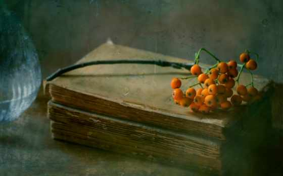 книга, рябина, rains, август, страница, капли, картинка, часы,