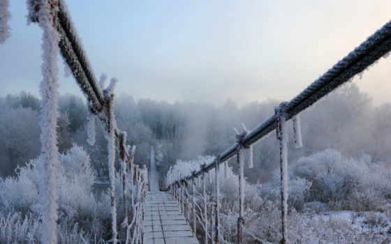 winter, иней, снег