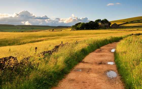дорога, margin, поле, дома, лужи, great britain, трава, великобритания, landscape, природа, ветер,