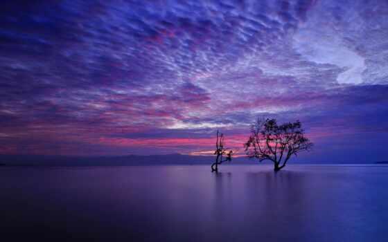 landscape, море, природа