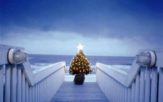 christmas, tree, моря, берегу, gift, free, with, się, beach, размере, one, новогодние, facebook, реальном, новогодней, картинку, просмотреть, обоей, её,