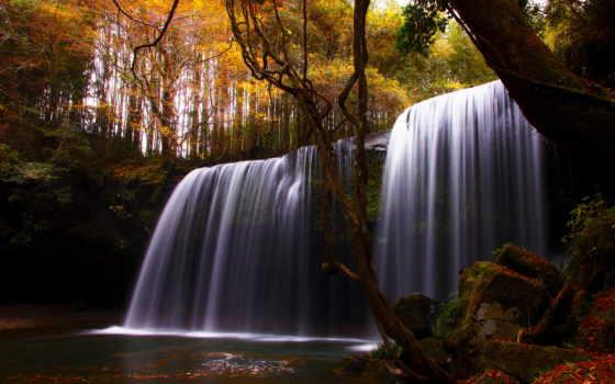 осень, природа, trees, водопад, река, лес,