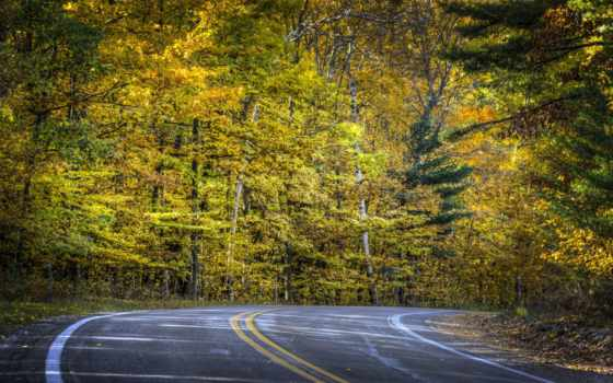 природа, дороги, fav, осень, дорога, картинку, landscape, winter, снег, trees, фотографий,