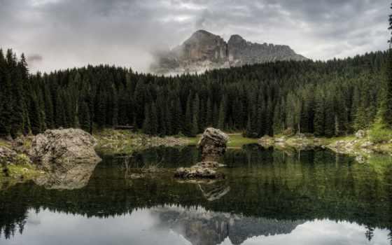 pine, лес, amazing, mountains, смотреть, free, природа,