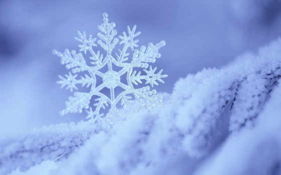 снежинка, снег