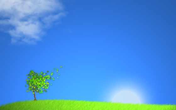 небо, голубое, листопад