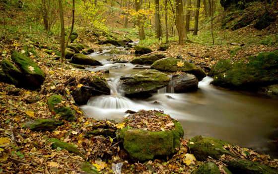 река, осень, природа, лес, trees, камни, ручей,
