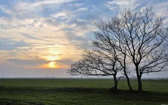 пейзажи -, deshojado, árbol, девушка, скалы, art, камни, море, поле, house,