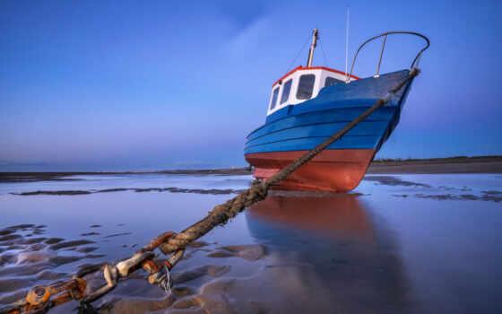 картинка, море, goodfon, лодка, берег, shoe, собака