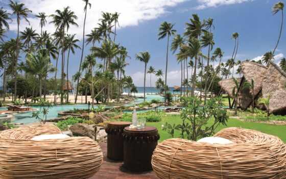 laucala, остров, resort, fiji, palm, отдых, бассейн, ocean, exotica, hotel, iddilie