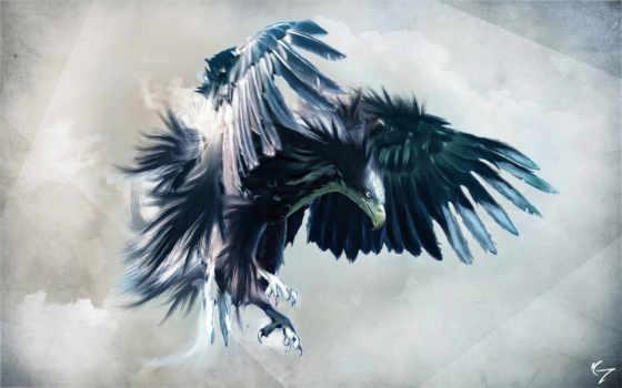 орел, взгляд