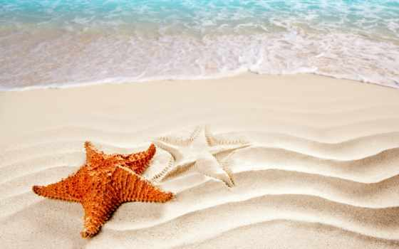 star, морская, берег