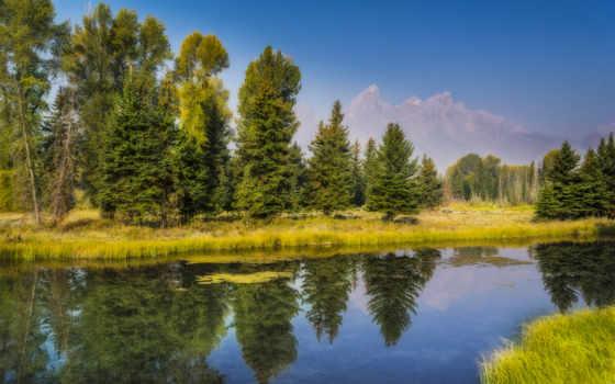Природа 25103