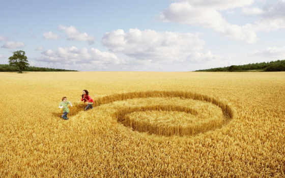 поле, девушка, люди