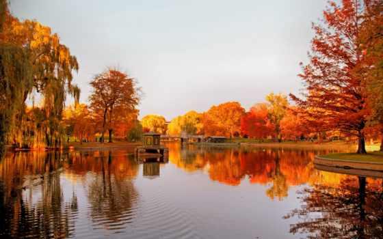 осень, природа, осени, damar, днем, boston, radyo, открытки, full,