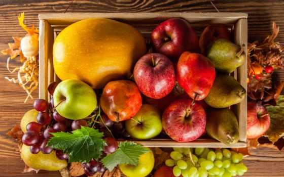 урожай, осень, und, фрукты, тыква, овощи,