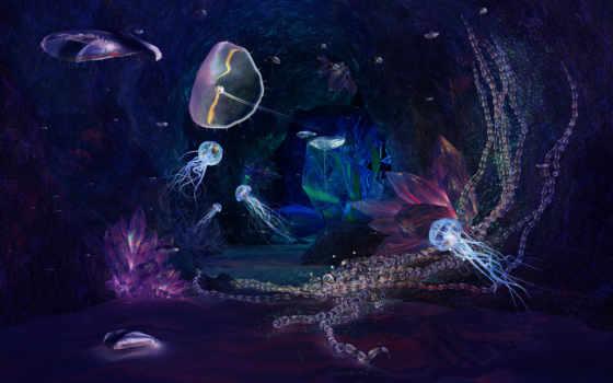 jellyfish, море, desktop, deep, full, fish, underwater,