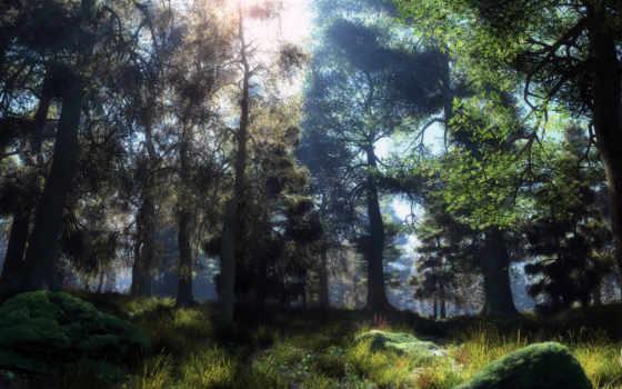 природа, лес, солнце, графика,
