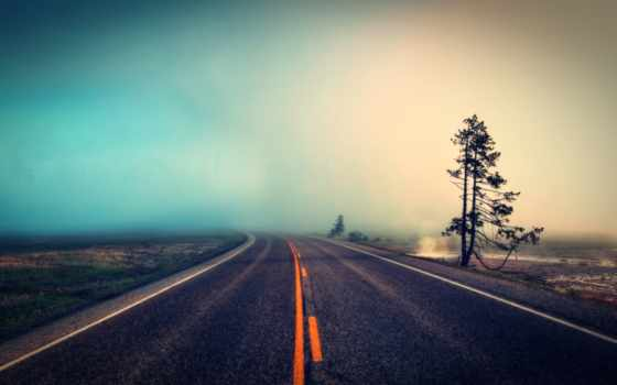туман, дорога, дерево, природа, красивые, лес, water, волн, черная, удары,
