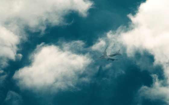 самолет, небо, шлейф, облака, авиация,