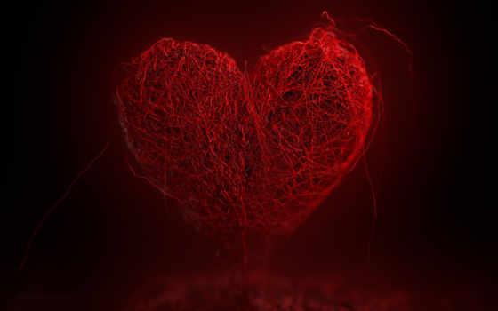 heart, красное