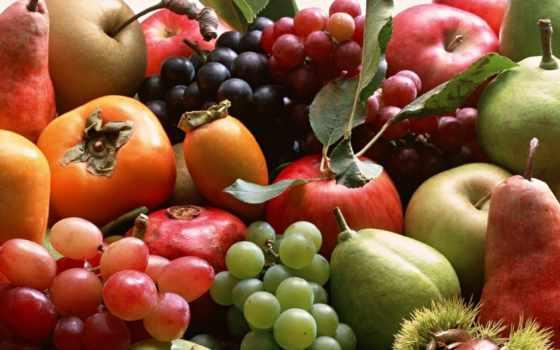 фрукты, овощи, фруктов,