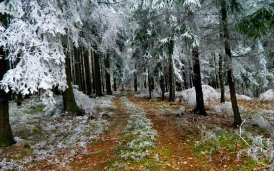 снег, initial, эмоции, ощущение, праздника, happen, сказочные, дарит, словно, должно,