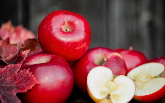 apple, яблоки, apples, orchard, осень, free, organic, red, свежие,