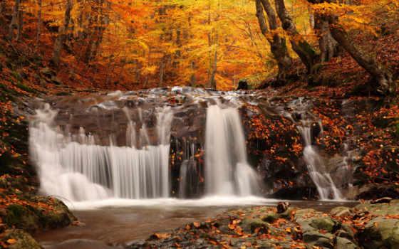 осень, листва, листопад, ранняя, landscape, золотая, водопад, природа, опавшие, лес,