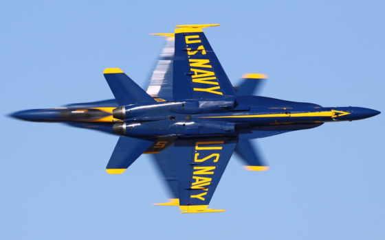 blue, angels, вмф, hornet, супер, hornets, полет,