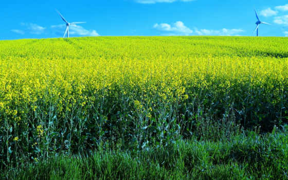 природа, windmills, landscape, поле, landscapes, free,
