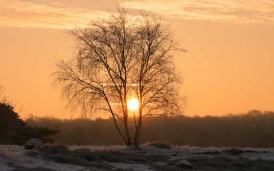 природа, лес, landscape, небо, закат, summer, утро, горы, winter, дек,