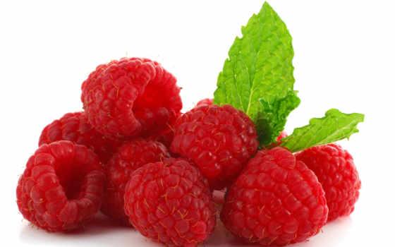 фрукты, производить, белом, fone, орехи, грецкие, ягоды, конференции, любой, aic, информ,