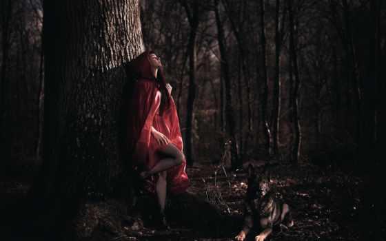 девушка, laurent, лесу, лес, kc, arya, собака, you,