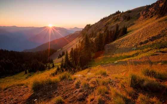 закат, sun, rays, склон, eli, trees, лес, горы, ocean,
